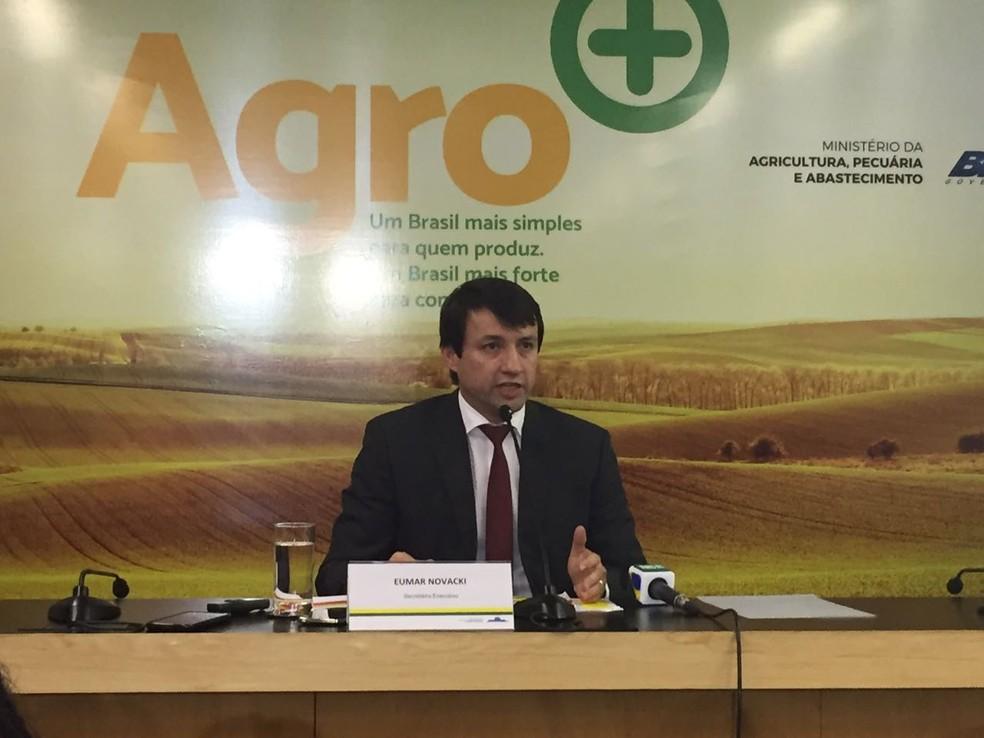 Eumar Novacki, do Ministério da Agricultura, fala sobre resultado de teste em amostras de carne (Foto: Laís Lis/G1)