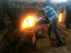 No Amapá, polícia incinera 70 quilos de droga avaliada em R$ 500 mil