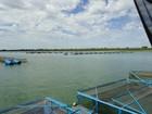 Em MS, ministro da Pesca autoriza construção de 5 parques aquícolas