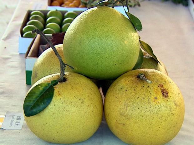 Fruta foi colhida em Guatapará após um ano no campo (Foto: Claudio Oliveira/EPTV)