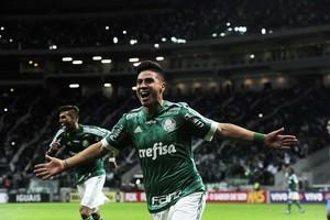 Palmeiras x Avaí Cristaldo (Foto: Marcos Ribolli)