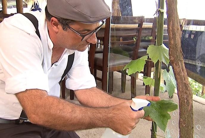 Programa mostra quem até quem tem plantas como estimação (Foto: Reprodução / TV TEM)