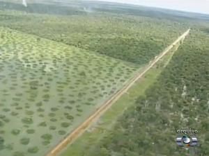 O canal construído para irrigar fazenda em Dueré tem 21 km de extensão (Foto: Reprodução/TV Anhanguera)