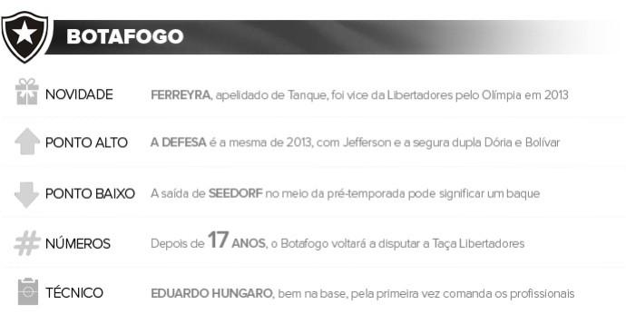 Apresentação BOTAFOGO (Foto: Infoesporte)