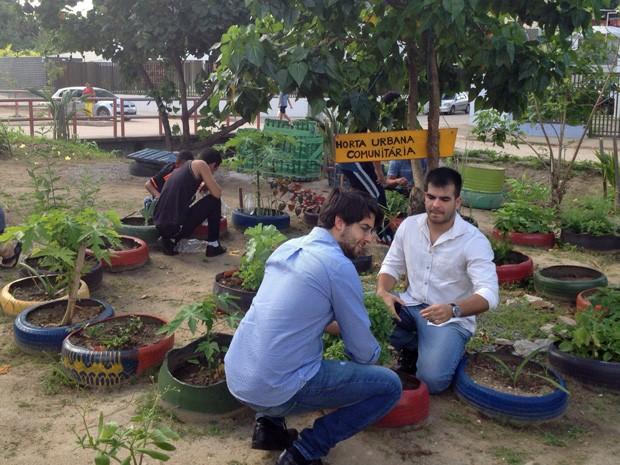 Moradores de Casa Amarela criaram a horta em um terreno (Foto: Wagner Sarmento/TV Globo)