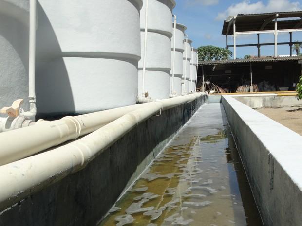 Água sai limpa dos tanques após o processo de decantação (Foto: Paula Cavalcante / G1 Caruaru)