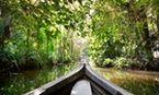 5 dicas de viagem para sentir a energia da Amazônia
