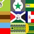 Professor cria  bandeiras de  bairros da cidade (Robson Letiere/Arquivo Pessoal)