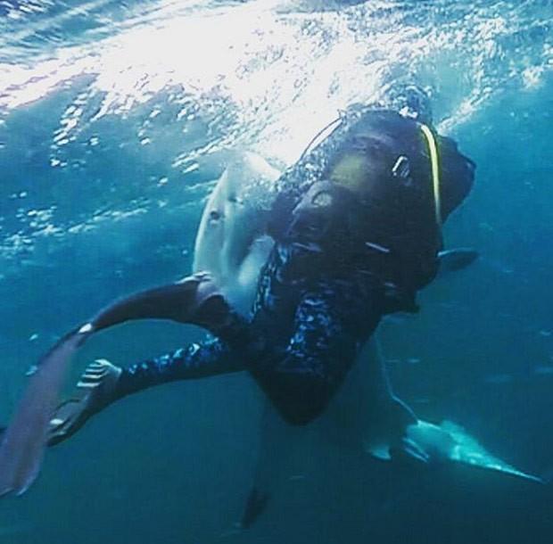 Grupo se arriscou e mergulhou ao lado de tubarões enquanto predadores se alimentavam de carcaça da baleia (Foto: Reprodução/ Instagram/Haroonskhokho)