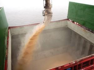 Operações com navios graneleiros precisam ser paralisadas com o tempo chuvoso  (Foto: Nájia Furlan / Appa)