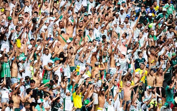torcida Palmeiras (Foto: Marcos Ribolli / Globoesporte.com)