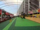 Camarotes investem em shows exclusivos para carnaval; veja lista