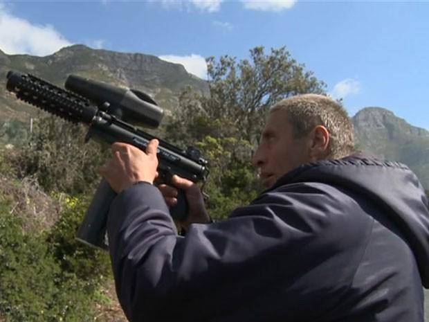Babuínos normalmente invadem casas da Cidade do Cabo, na África do Sul (Foto: Reprodução/BBC)