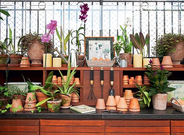 jardim-paisagismo-ferramentas-plantas (Foto: Lilian Knobel/Editora globo)