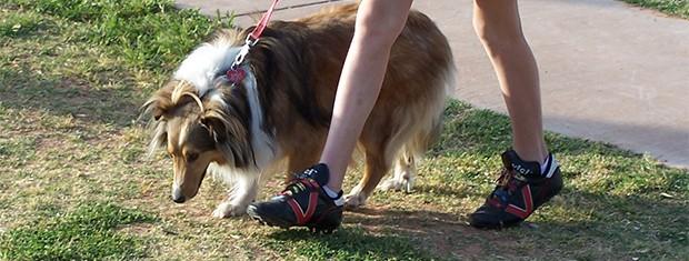 Passeando com o cachorro   (Foto: sxc)