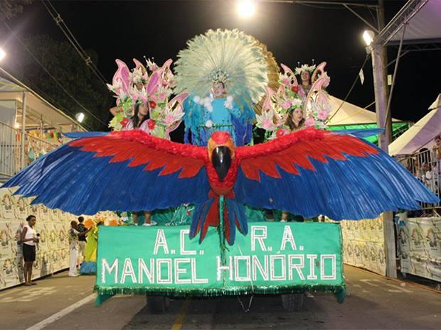 Acadêmicos do Manoel Honório Carnaval 2013 (Foto: Gil Velloso PJF/ Divulgação)