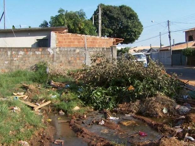 Saúde alerta população para combate à dengue, em Campinas, SP (Foto: Reprodução / EPTV)