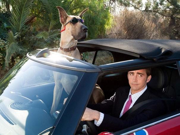 Marmaduke se muda com a família para a Flórida e apronta todas (Foto: divulgação)