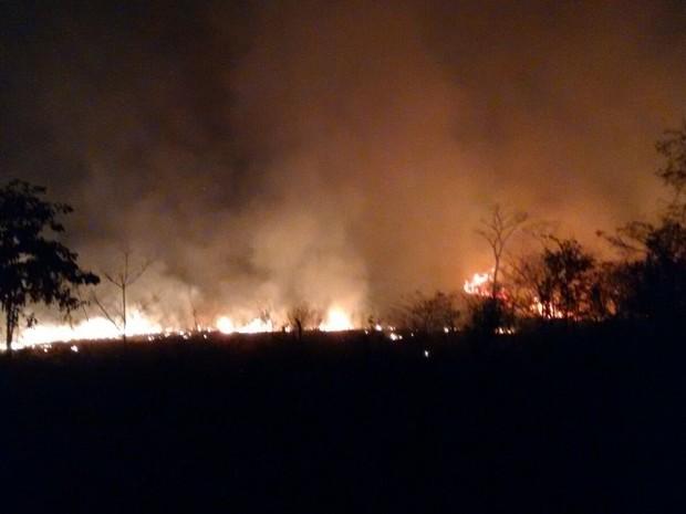 Incêndio que atingiu uma mata próxima do perímetro urbano de Cacoal, RO (Foto: Marcelo Nery/Arquivo Pessoal)