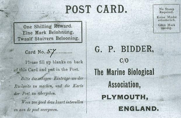 Garrafa com mensagem lançada no mar é encontrada mais de 100 anos depois (Foto: Marine Biological Association of the U.K/AP)