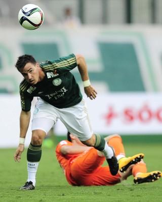 Mouche Palmeiras (Foto: Marcos Ribolli)