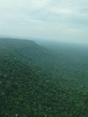 Floresta está dentro da área do município de Porto Velho (Foto: ICMBio/Divulgação)
