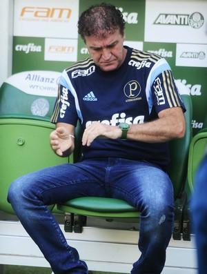 Palmeiras x Sport Cuca (Foto: Marcos Ribolli)