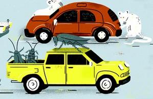 Autoesporte