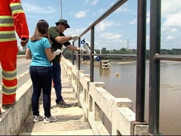 Técnicos recolhem amostras de água do Rio Doce para análise, no Espírito Santp (Foto: Reprodução/ TV Gazeta)
