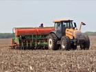 Agricultores aceleram o plantio da soja no Mato Grosso do Sul
