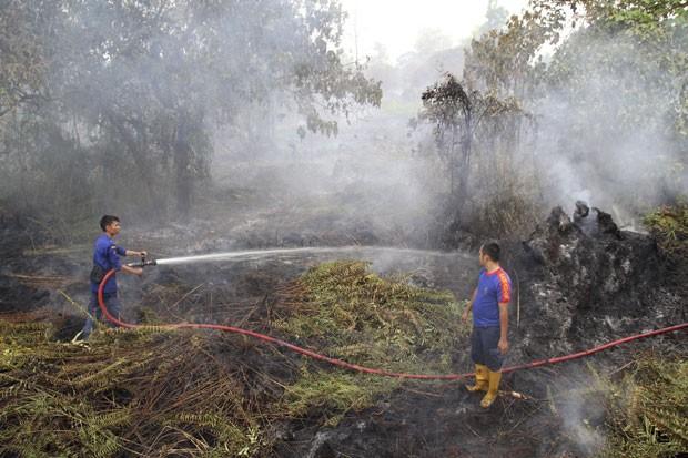 Brigadas de incêndio trabalham em Pekanbaru, na Indonésia, contra incêndios florestais que causam fumaça em excesso e já prejudicam Cingapura, país vizinho (Foto: Rony Muharrman/AP)