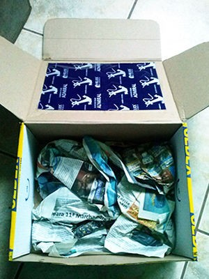 Caixa tinha folhas de carbono e CDs para tentar evitar identificação (Foto: Polícia Ambiental/ Várzea Grande-MT)
