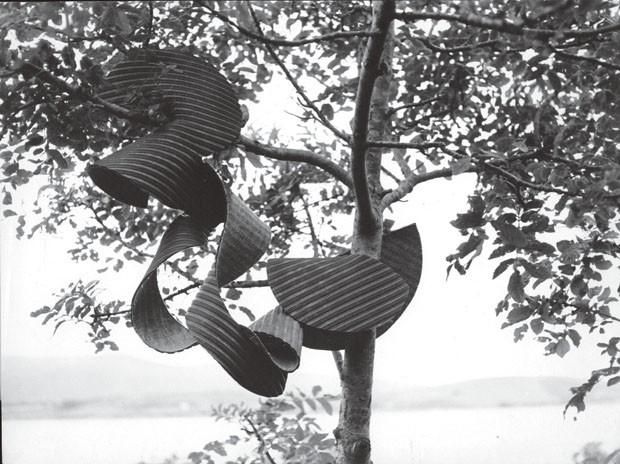 """Obra Mole, 1964, de Lygia Clark (Foto: Associação Cultural """"o Mundo de lygia Clark"""")"""