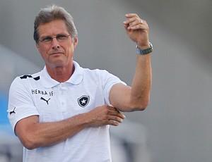Oswaldo de Oliveira, Botafogo x Boavista (Foto: Wagner Meier/AGIF)