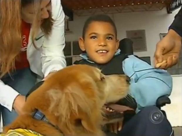 Pet terapia em Bauru (Foto: Reprodução/TV TEM)