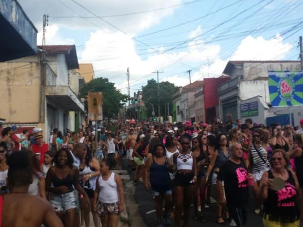 Desfile da Sapucaia percorre ruas do Bairro Alto em Piracicaba (Foto: Carol Giantomaso/G1)