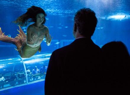Eugênio flagra Ritinha no aquário