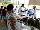 Feiras populares dão início à venda  de peixes na Semana Santa, em Manaus