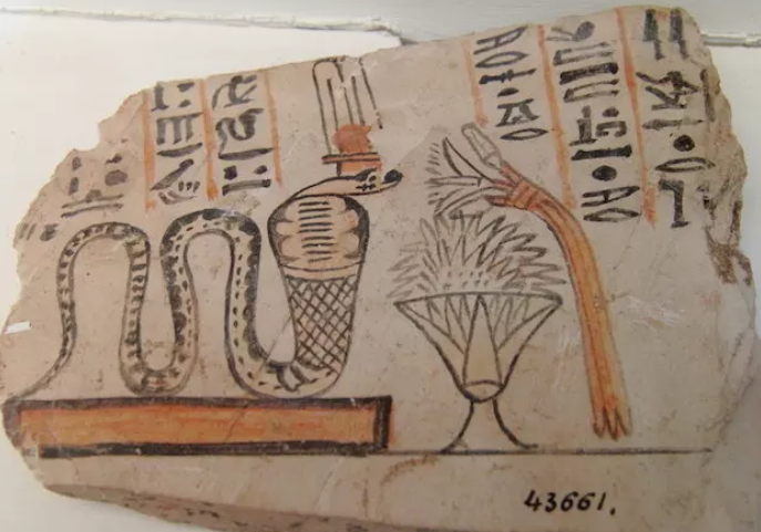 """Moradores do Antigo Egito pensavam que a alface era um """"viagra natural"""" (Foto: Wikimedia Commons)"""