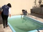 Prefeitura e imobiliárias de Mirassol se unem para tentar eliminar dengue