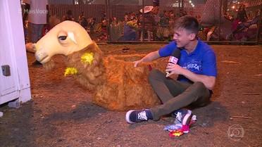 O que os foliões fazem com as fantasias depois do desfile?