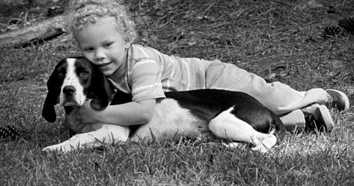 Convívio com cães 'reduz risco de asma em crianças'