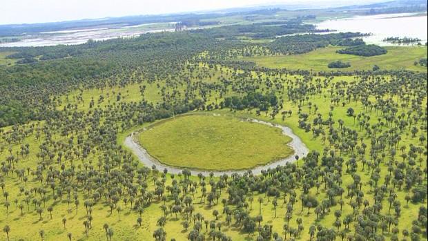 Butiazal ocupa 800 hectares em Tapes, RS (Foto: Reprodução/RBS TV)