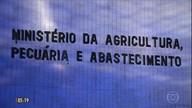Coreia do Sul anuncia retomada da compra de carne de frango do Brasil