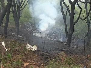 Acidente Avião Vilma Alimentos Juiz de Fora 2012 4 (Foto: Reprodução/ TV Integração)