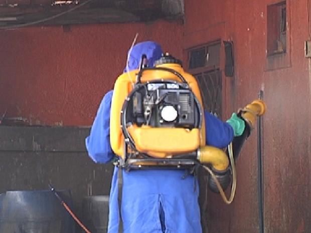 Agente faz nebulização em casa em Rio Preto (Foto: Reprodução / TV Tem)