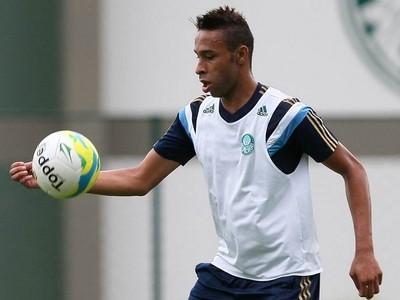 Wellington Palmeiras (Foto: Cesar Greco/Ag Palmeiras/Divulgação)