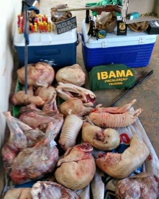 Material apreendido ficou sob responsabilidade do Ibama (Foto: Divulgação da polícia )