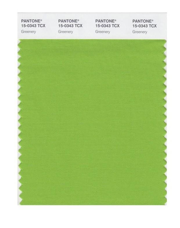 Greenery 15-0343 (Foto: Reprodução)