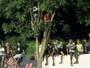 Árvore, caçamba e muro VIP: torcida faz de tudo para ver final de estadual